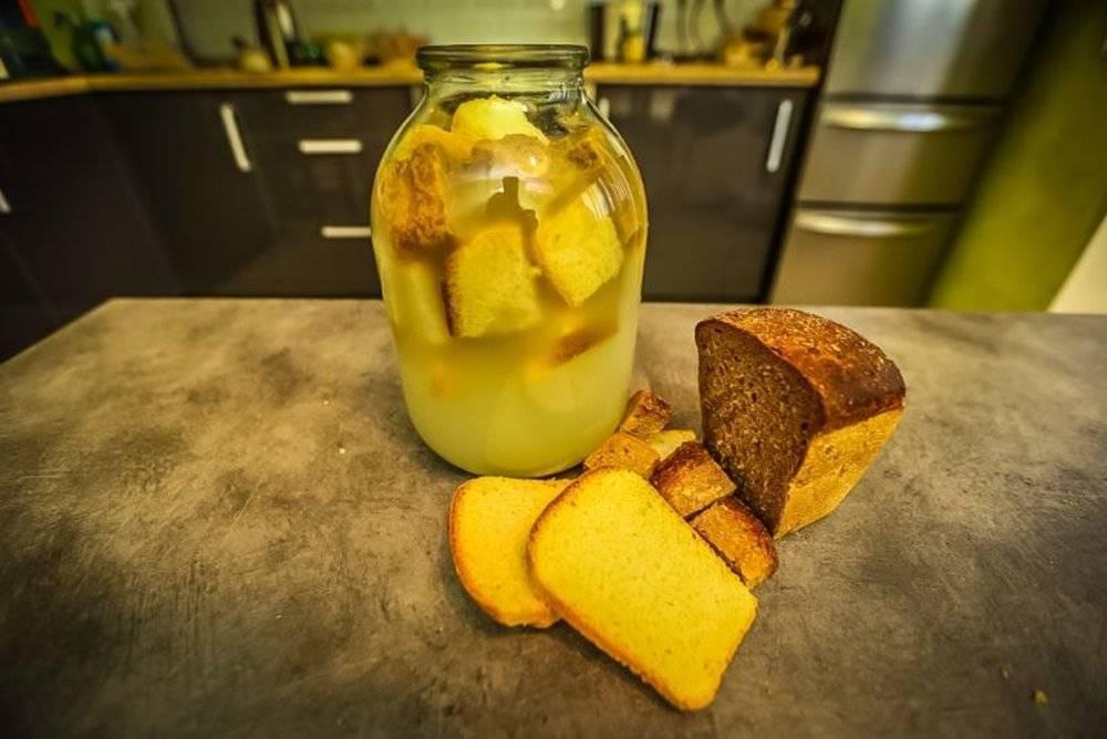 Как сделать квас из березового сока? рецепты березового кваса в домашних условиях