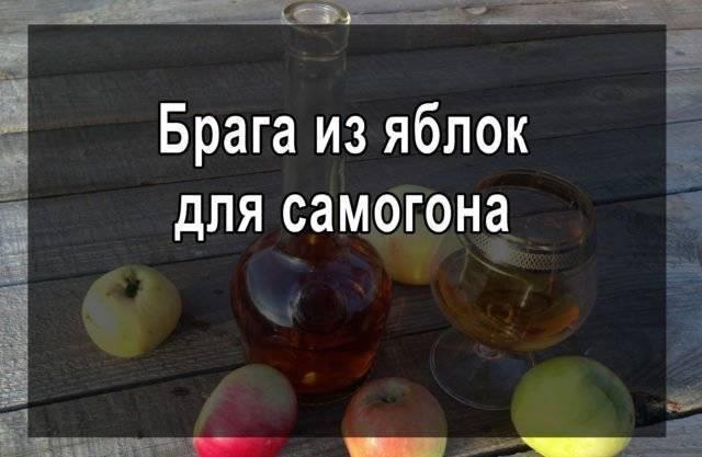 Брага из яблок без дрожжей: технология и рецепты
