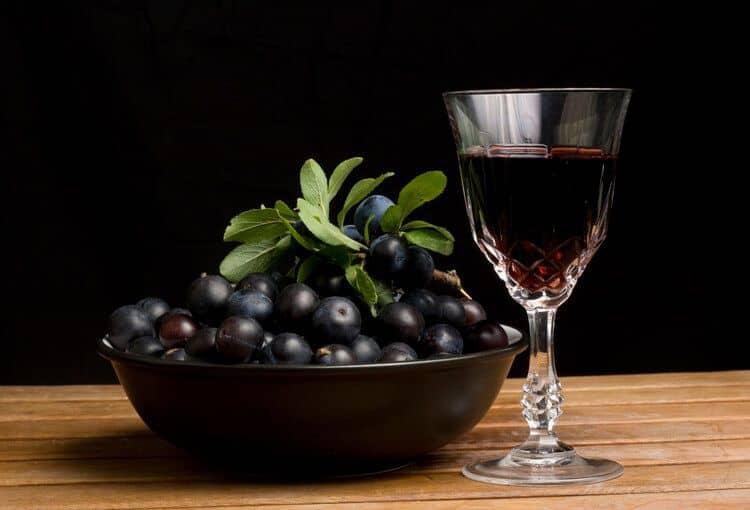 Вино из терна в домашних условиях — 5 простых рецептов с фото пошагово