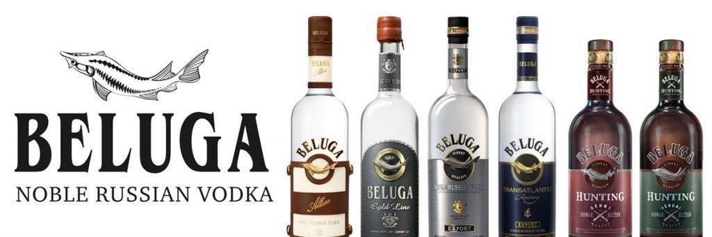 Водка белуга: вкусовые характеристики и виды люксового алкоголя - международная платформа для барменов inshaker