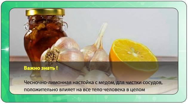 Топ 5 рецептов настойки из лимона и чеснока для чистки сосудов