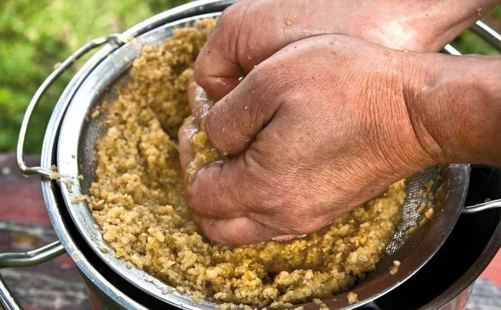 Простой рецепт приготовления вина из яблочного жмыха который остался после соковыжималки