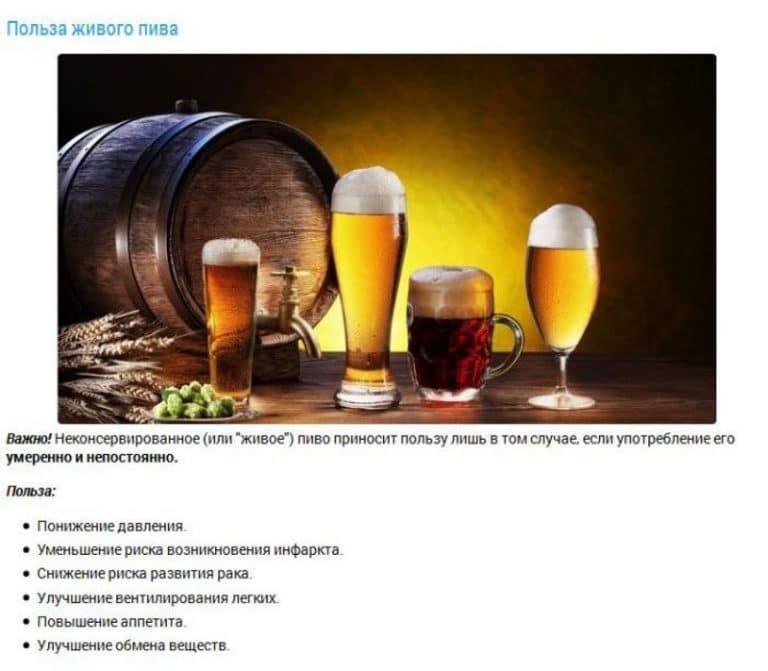 Польза и вред пива для организма