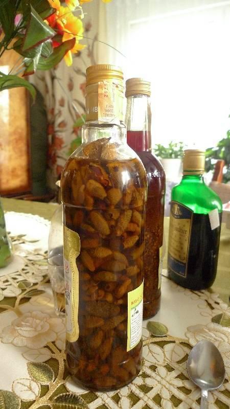 Как выглядят березовые почки. настойка из березовых почек на спирту или водке. заготовка лечебного сырья