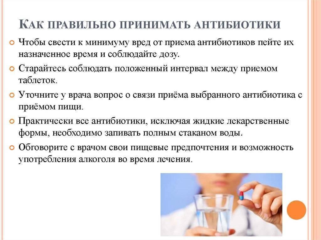 Через сколько можно пить пиво после приема антибиотиков. реакция организма на пиво и антибиотики