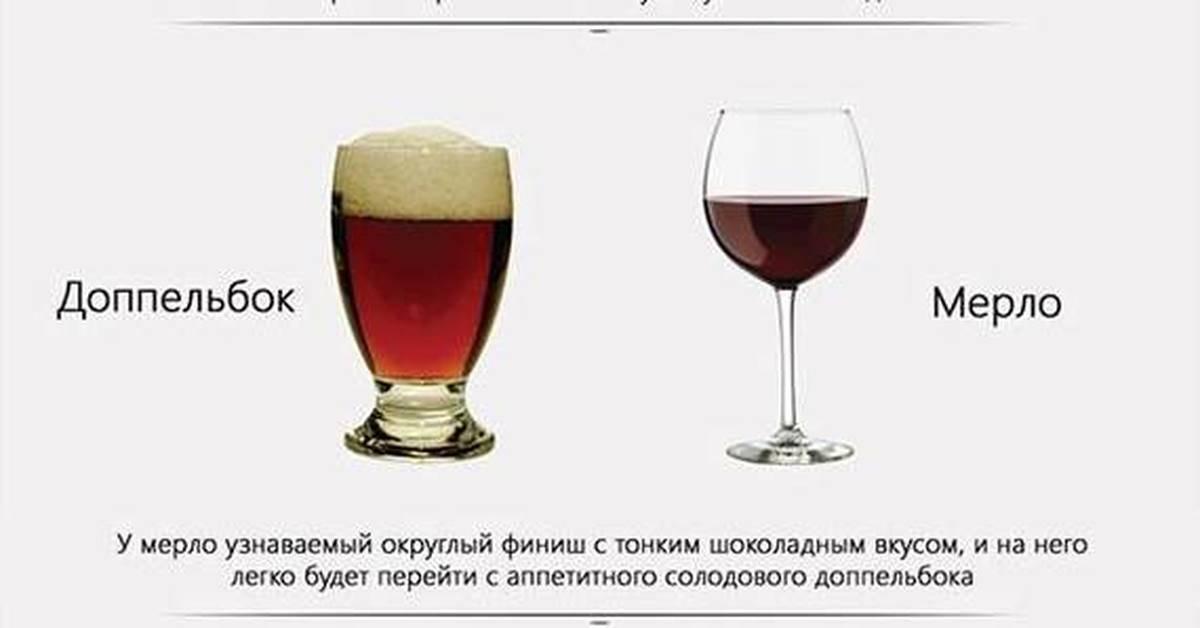 Что вреднее для организма пиво или водка? | польза и вред