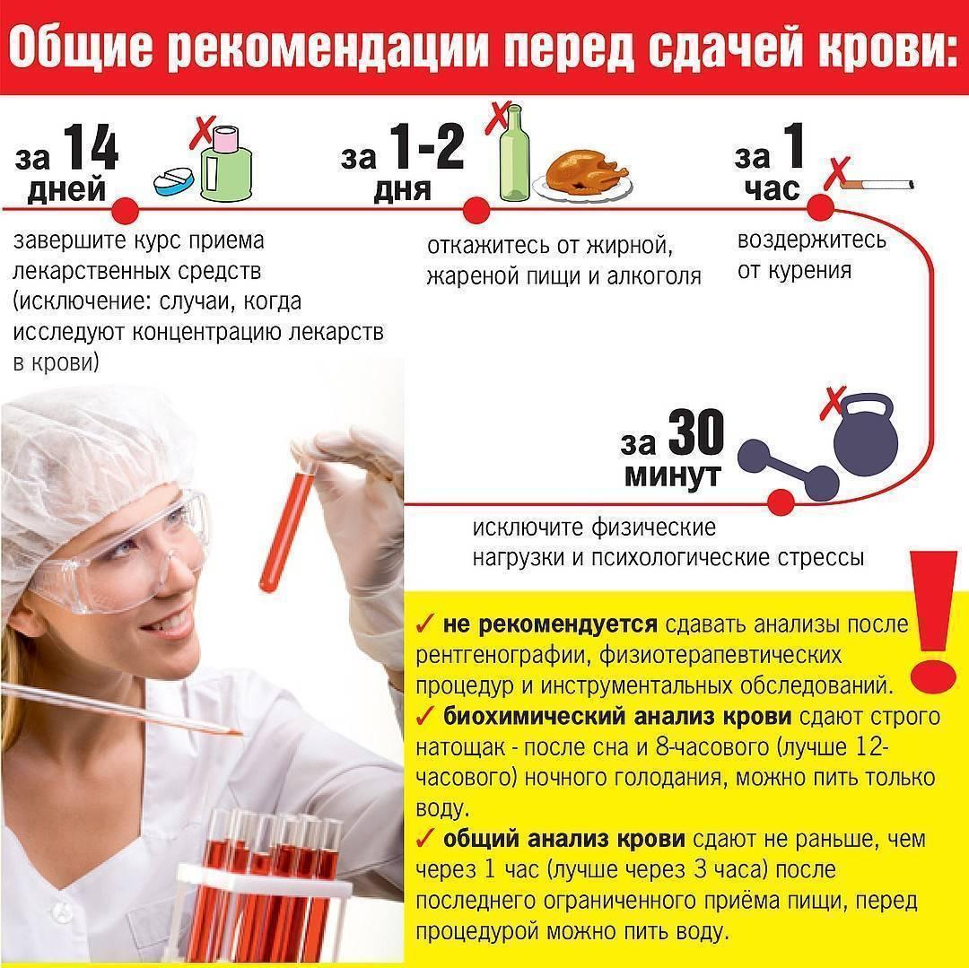 Можно ли употреблять алкоголь перед сдачей анализов; как алкоголь влияет на анализ мочи и крови