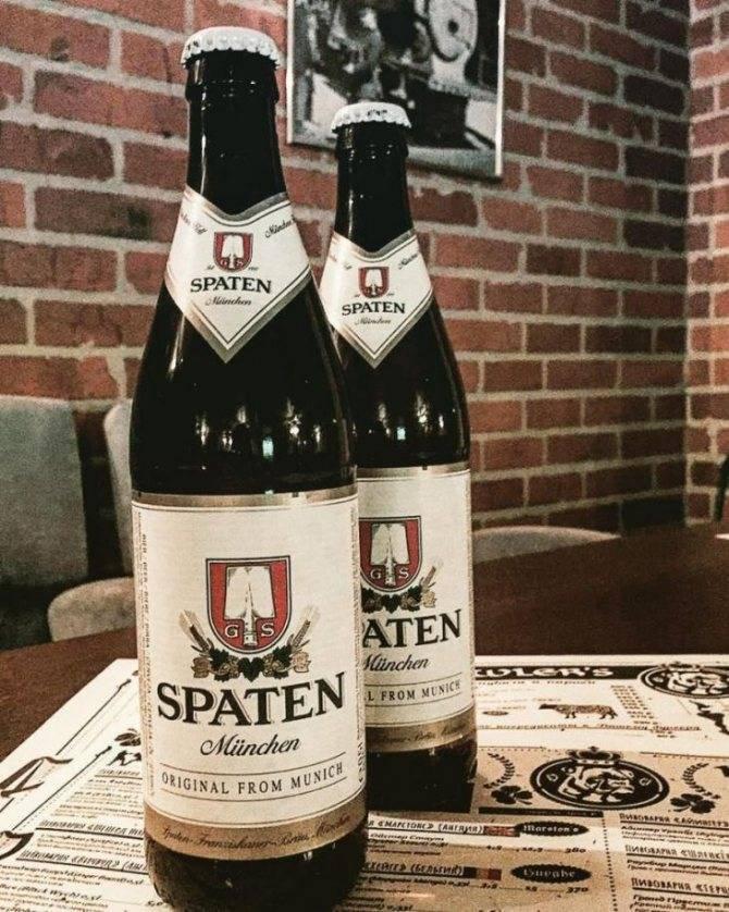 Пиво шпатен (spaten): напиток по всем «законам» немецкого пивоварения | inshaker | яндекс дзен