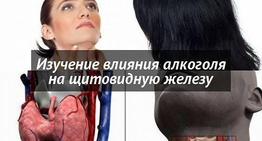 Влияние алкоголя на щитовидную железу и можно ли пить после ее удаления?