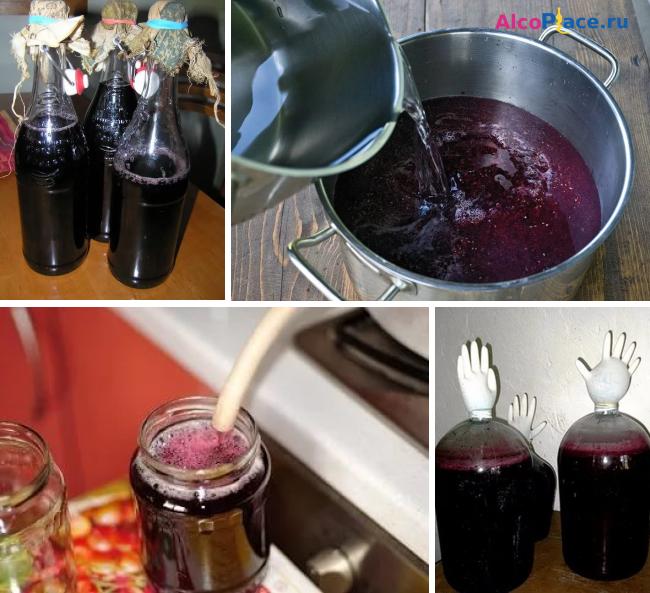 Вино из ранеток - ароматный алкоголь по домашним рецептам