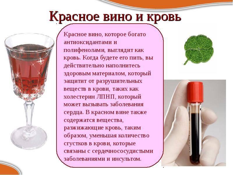 Какое вино разжижает кровь и препятствует ее сгущению — обзор 6 сортов