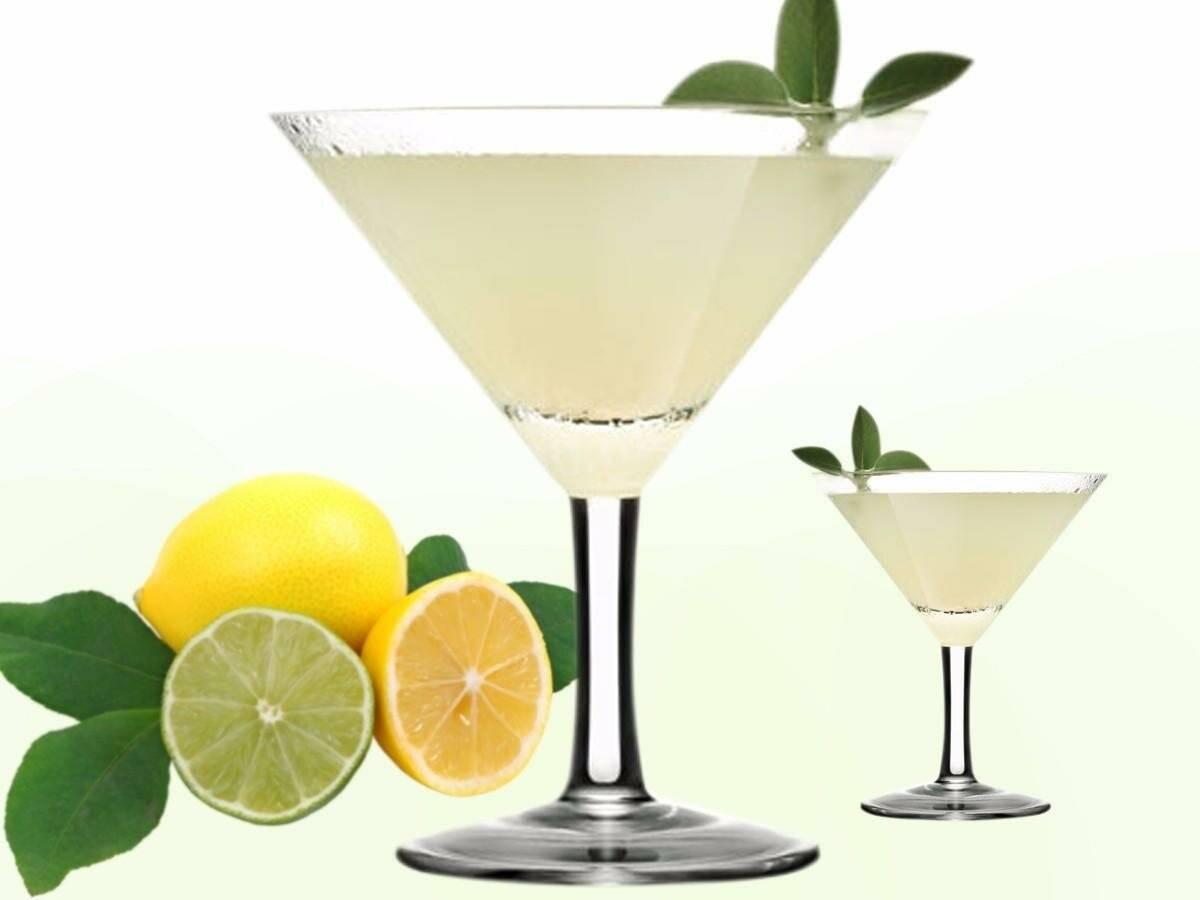 Белая леди: история, классический рецепт коктейля, состав, пропорции. топ-10 лучших рецептов коктейля!