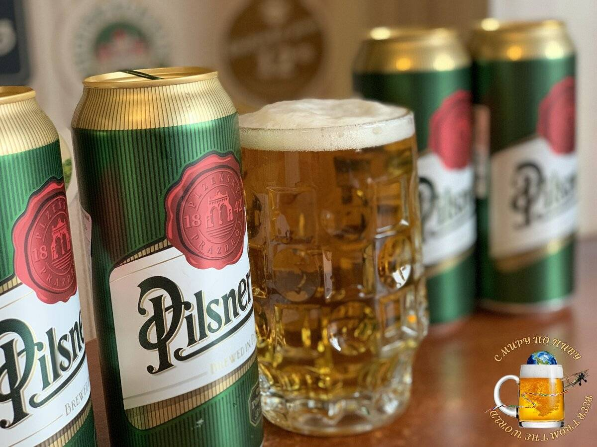 Пиво пильзнер: особенности, история, стили, культура пития