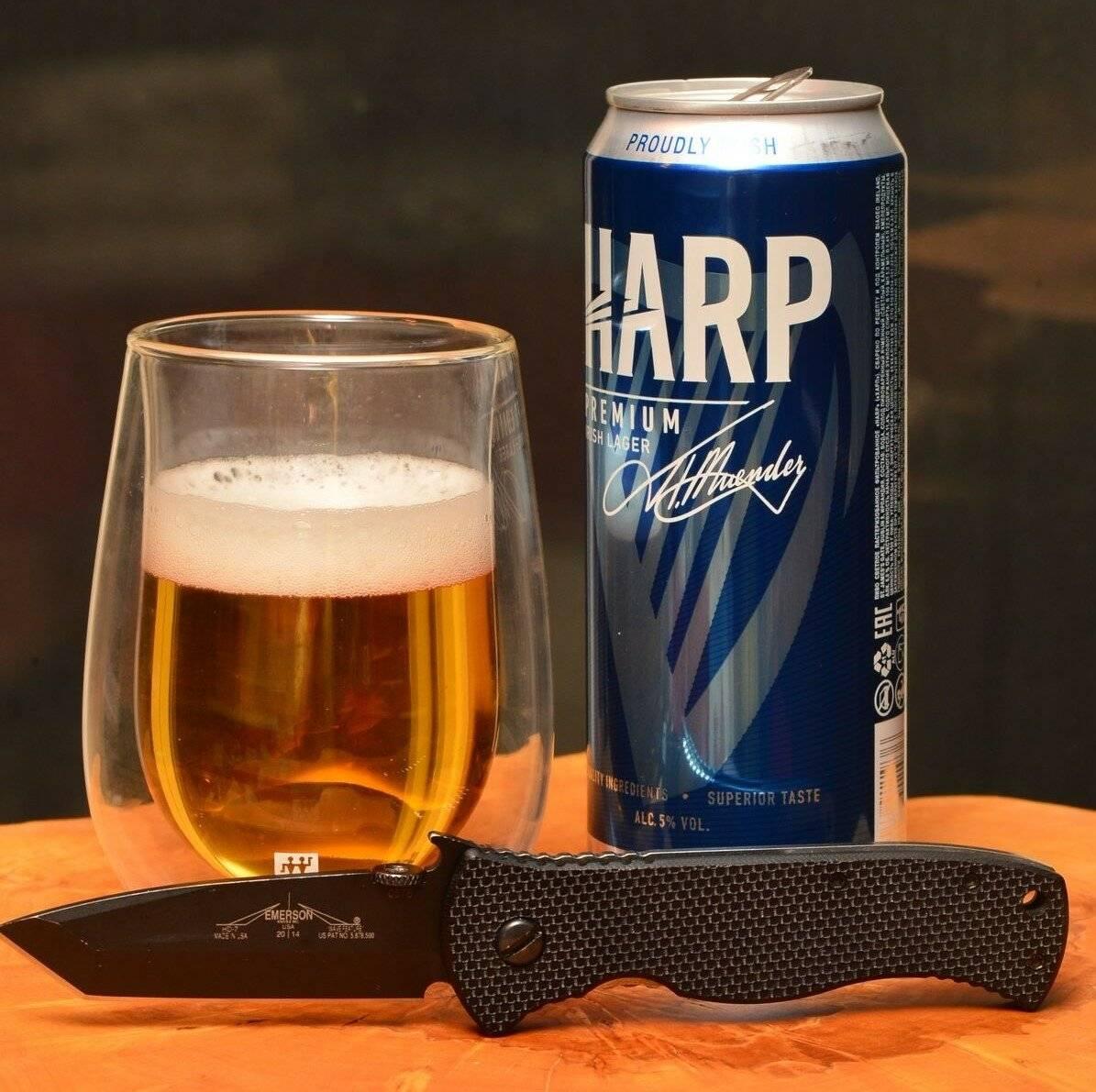 Пиво харп: вековые традиции на страже качества