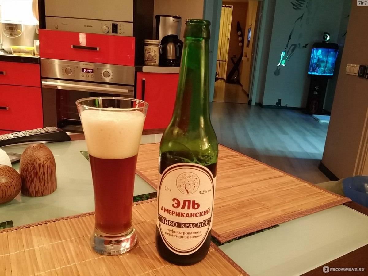 Что такое ирландский эль в чем отличия от пива?