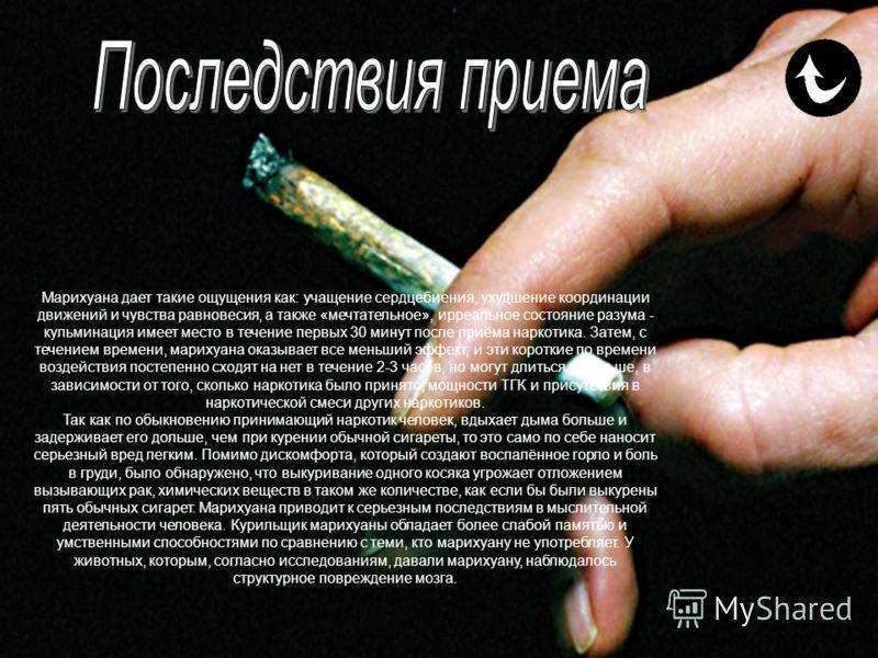 Как бросить курить марихуану самостоятельно, лучшие способы