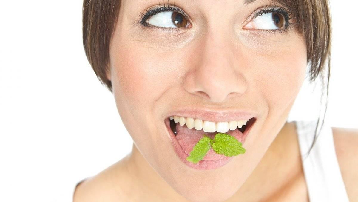Как убрать перегар в домашних условиях: чем можно быстро перебить запах алкоголя изо рта с утра, видео, как избавиться медикаментами и народными средствами