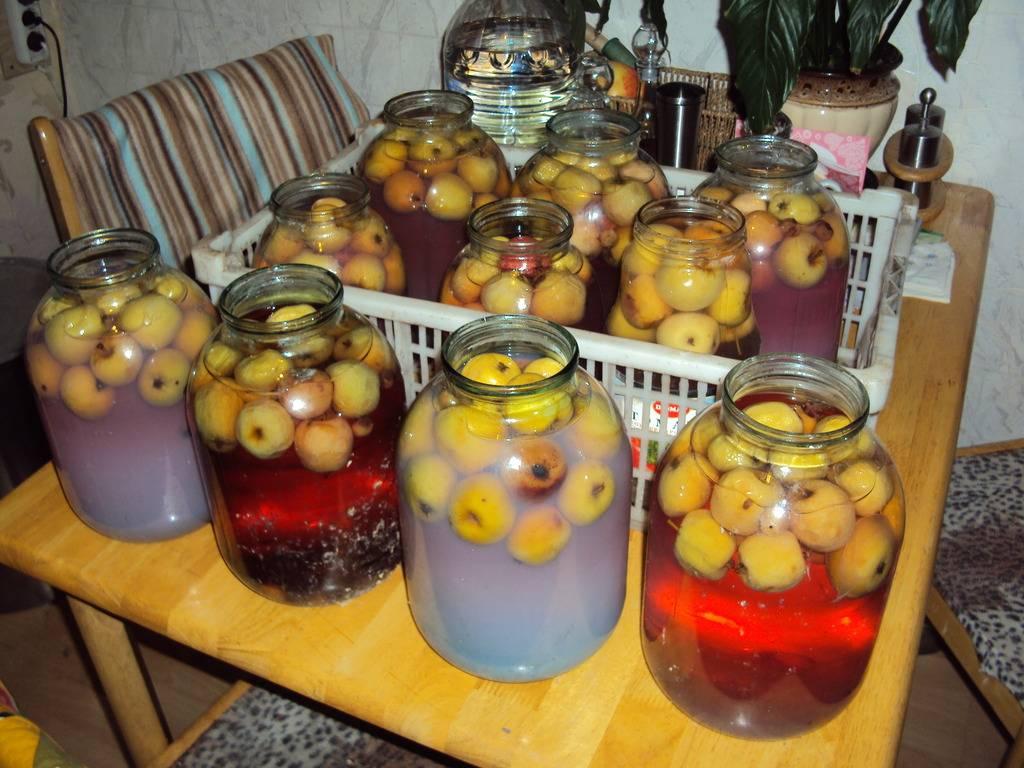 Вино из компота - рецепты приготовления в домашних условиях