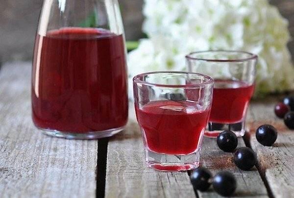 Настойки из черной и красной смородины на водке и джине